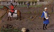 Agriculture au Moyen semences