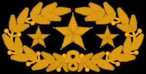 Insigne de col d'un général confédéré