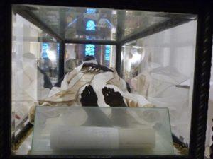 Momie de Sainte Roseline